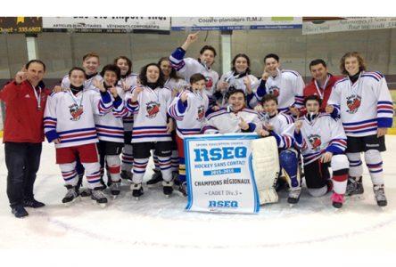 Champions en hockey scolaire