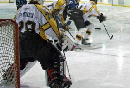 Hockey senior: toutes les équipes en action