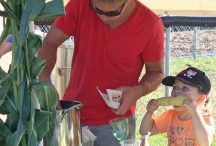 Neuville protège son maïs