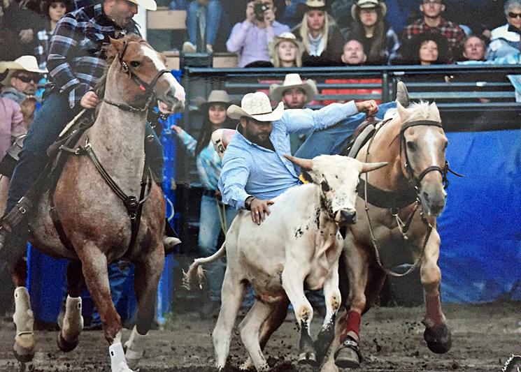 Dale Brière avec les meilleurs cowboys