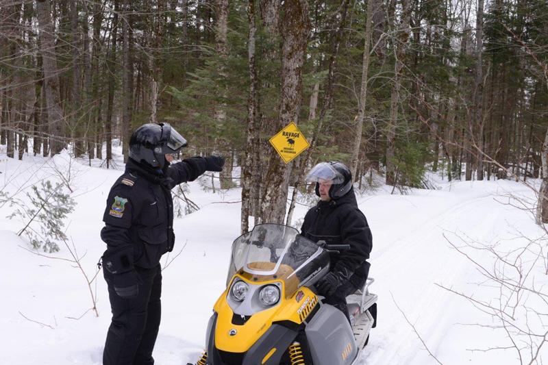 La motoneige hors-piste met en danger les cervidés dans la Réserve de Portneuf