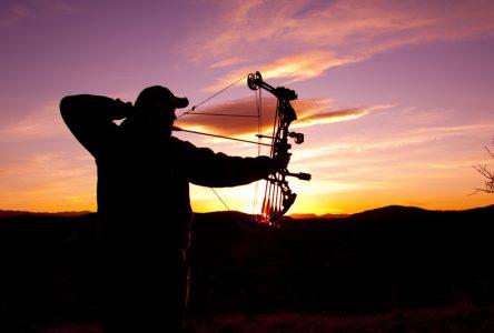 Bilan de la chasse au cerf de Virginie dans Portneuf