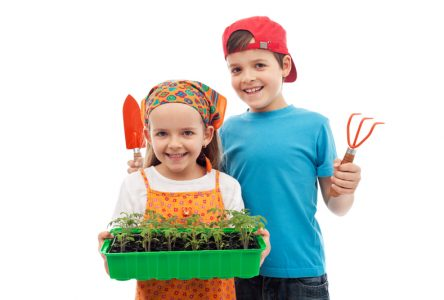 Des jeunes dans le jardin et à l'érablière