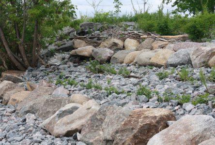 Une solution à l'érosion riveraine à Deschambault