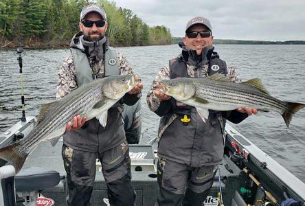 Du gros poisson pour deux pêcheurs de Saint-Raymond