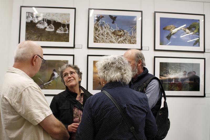 Le Marais Provancher comble les photographes