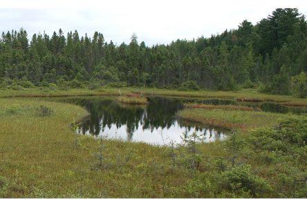 CAPSA: problématiques prioritaires ciblées pour les bassins versants