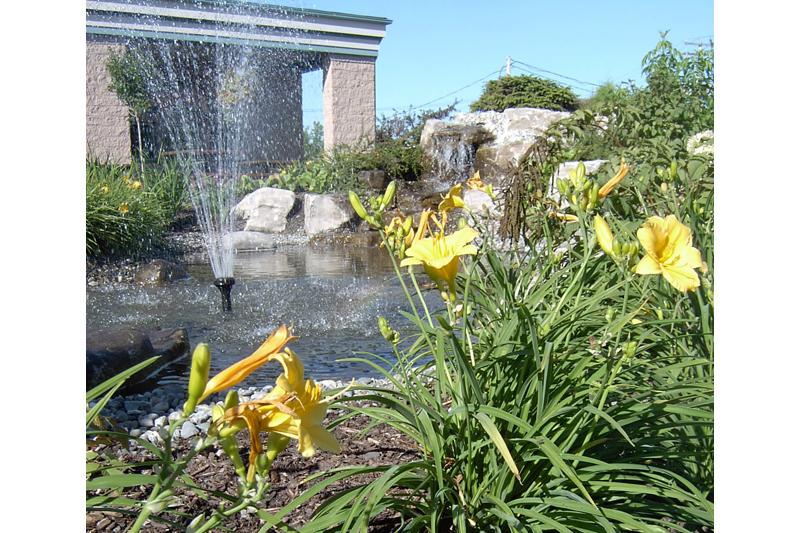 Coup de cœur pour le nom d'un parc à Sainte-Catherine-de-la-Jacques-Cartier