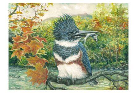 Le martin-pêcheur en vedette pour la Fondation de la faune