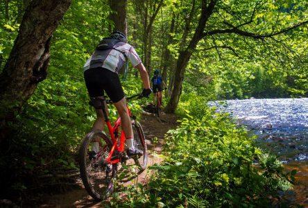 Du vélo de montagne dans cinq municipalités